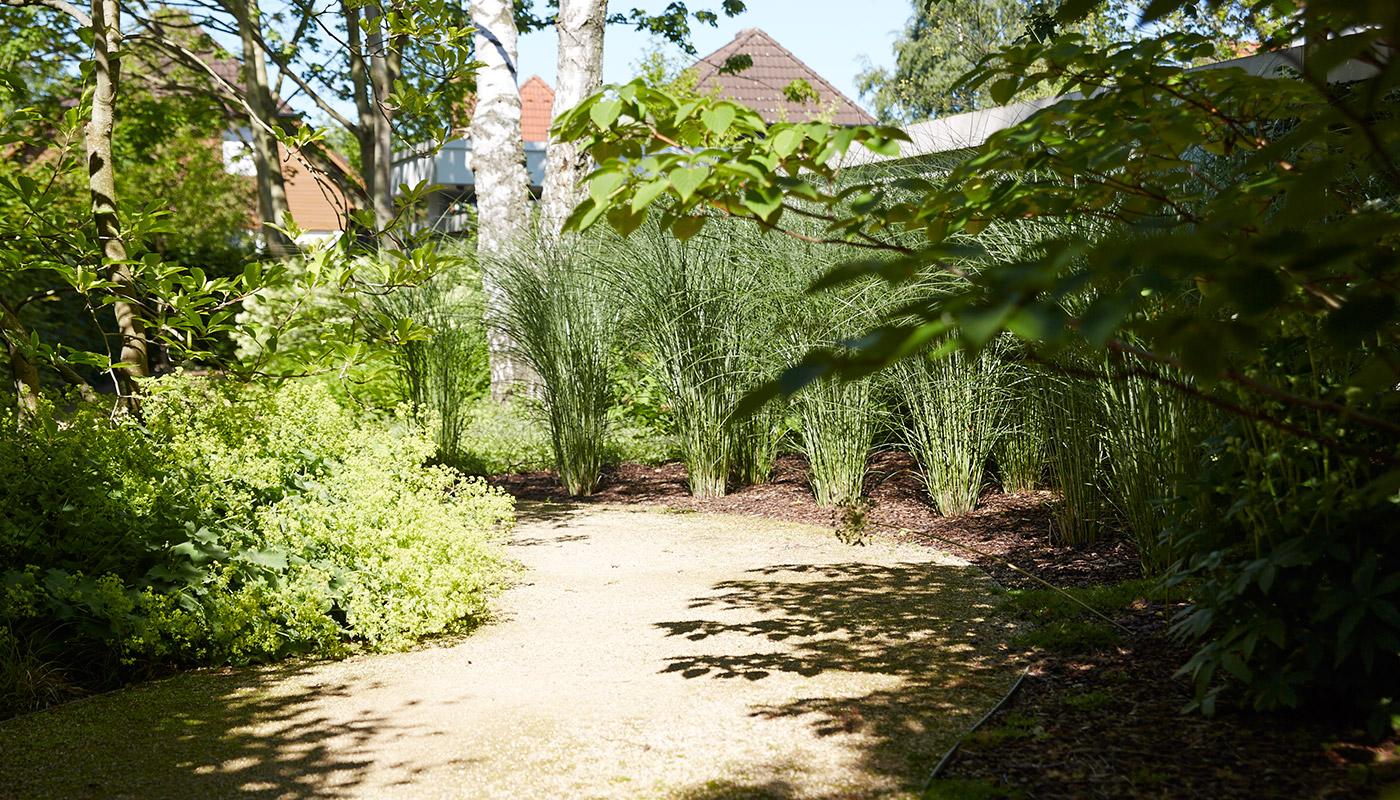 Impressionen - Janisch Garten- und Landschaftsbau in Hannover